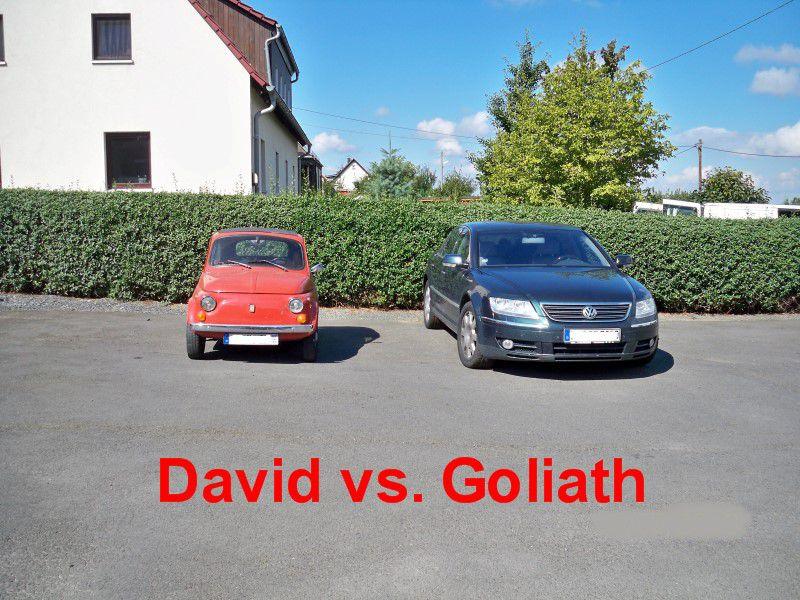 David_gg._Goliath_1